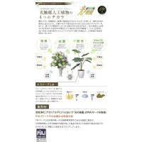 光の楽園 パキラトピアリー 1.2m 193A180【Artificial flower Houseplant】【光触媒 造花 人工 観葉 植物 ギフト アレンジメント アート イミテーション】