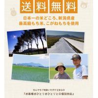 本格 切り餅セット 新潟県の最高品種こがねもちを100%使用 本物の味をご家庭で|awaduya-store|05