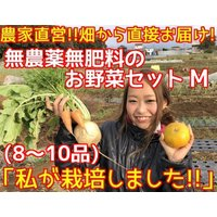 綾善特製の無農薬野菜セットのMサイズです。旬の野菜を8〜10品目お送り致します。スタンダードな野菜も...