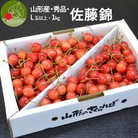 日本No.1生産量を誇るサクランボ産地の山形県から 期間・数量限定で美味しい佐藤錦を発送いたします。...