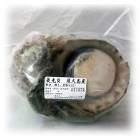 ・夜光貝の貝と身は分別して、身はビニール袋に入っています。 ・夜光貝の身の部分は、柔らかい貝柱は、お...