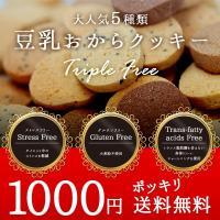 豆乳おからクッキー 話題のグルテンフリー お試しダイエットクッキー 1000円ポッキリで販売 送料無料 250gx1袋(小分け包装)