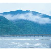 渡月橋 〜嵐山〜 水野克比古 大判スカーフ 日本製 京都 写真 Ballett