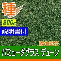 芝 芝生 種 暖地型 バミューダグラス デューン 200g メール便