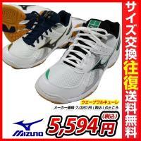 「バレーボールは、お好きですか?」女性の足とココロをサポートするエントリーモデル。●素材:合成繊維、...