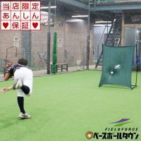 野球 壁あてネット 投球・守備練習用 ピッチング 壁ネット 練習用品 FKB-1310K フィールドフォース ラッピング不可 あすつく