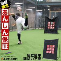 野球 ターゲットコントロール 軟式用 投球 ピッチング 練習用品 FPN-1310P フィールドフォース ラッピング不可