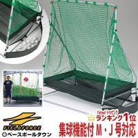 軟式ボール専用、ターゲット・固定用ペグ(4本)。  ●前面フレームサイズ:横巾160cm×高さ200...