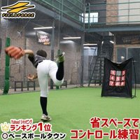野球 練習 ターゲットコントロール 軟式用 投球練習 ピッチング 軟式野球用 FPN-1310P ラッピング不可 フィールドフォース
