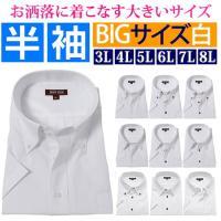 大きいサイズ ボタンダウン レギュラー ワイド のyシャツ 半袖 シャツをご用意。白無地シャツよりも...