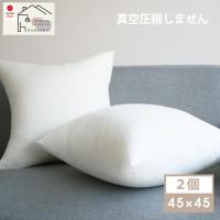 ヌードクッション 肉厚 45×45 2個セット 日本製 東レFT綿使用 ふっかふかのままお届け 送料無料 クッション 中身 背当て 佐川またはヤマト便