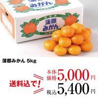 愛知県産のみずみずしい蒲郡みかんをお届けします。  内容  約5kg(M・Lサイズ)  ◎承り期間:...