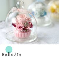 ガラスケースに入った誕生日や御祝いに人気のプリザーブドフラワー!選べる3カラー!  pre0139 ...