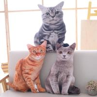 ●ぬいぐるみ 猫 ●素材:PP綿 ●サイズ: 50cm  ●カラー:写真に参考してください♪ ●滑ら...