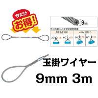 ■ワイヤー 玉掛けワイヤー 9mm 3m ワイヤーロープスリング セーフティーワイヤー シンプル  ...