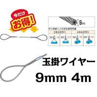■ワイヤー 玉掛けワイヤー 9mm 4m ワイヤーロープスリング セーフティーワイヤー シンプル  ...
