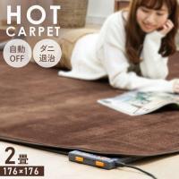 ホットカーペット 2畳 本体 電気カーペット 2畳用 2帖 暖房 カーペット 176×176cm 収納 折り畳み ダニ退治機能 テクノス TEKNOS(あすつく)