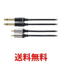 audio-technica AT581A/1.5 オーディオテクニカ AT581A1.5 GOLD LINK Fine オーディオ変換ケーブル ピン×2 - モノラル標準×2 1.5m