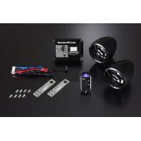 商品情報:SDカード USBポート MP3対応デジタルオーディオキット      フラッシュ&セキュ...