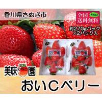 美味いちご園 おいCベリー 大粒約270g×2パック 香川県産