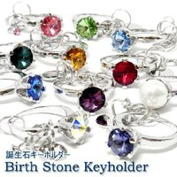 あなたの誕生石はどれですか? 1月から12月までの誕生石をリング型にしたキーホルダーです。  宝石の...