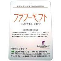 花とギフトのセット 胡蝶蘭 大輪1本立とカタログギフト(ヴァンウェスト/ルージュ)|biz-hana|04