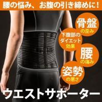 ウエストサポーター / 腰 サポート ウエスト サポーター 腰痛 補正 矯正 固定 姿勢 コルセット