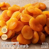 ドライアプリコット トルコ産 アプリコット 850g [ あんず 杏 送料無料 ドライフルーツ 砂糖不使用 大容量 訳あり ]  1kgより少し少ない850g