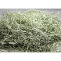 牧草市場 バミューダヘイ 3kg (500g×6パック)|bokusoichiba|02