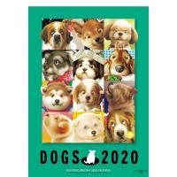 〔予約〕2020年版 村松誠 犬カレンダー