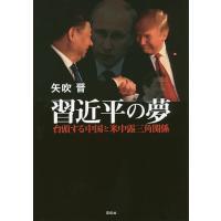 著:矢吹晋 出版社:花伝社 発行年月:2017年06月