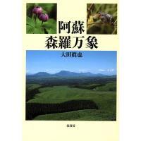 著:大田眞也 出版社:弦書房 発行年月:2009年11月