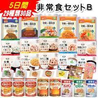 非常食セットB 5日間29種類30品 (賞味期限5年保存 防災グッズ 保存食 アルファ米)