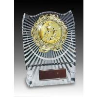 SUNLEO サンレオ クリア樹脂楯(盾) ATZ-8477 Aサイズ  タテ173mm×ヨコ130...