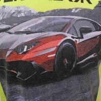 ランボルギーニ メンズ アヴェンタドール LP スーパーヴェローチェ Tシャツ ライムグリーン (宅急便コンパクト対応)