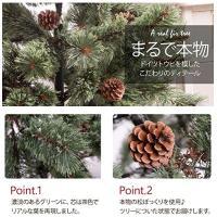 クリスマスツリー 120? クラシックタイプ ドイツトウヒツリー ヌードツリー Abies アビエス
