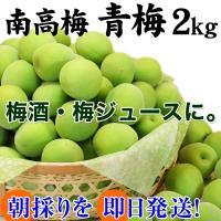 梅酒、梅ジュース作りに最適な南高梅の青梅と、梅干し作り、梅ジャム作りに最適な完熟梅を日本一の梅の産地...