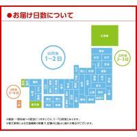 【送料無料】からだすこやか茶W-1050mlPET(ペットボトル)×12本 10051681|cdmfivewish|03