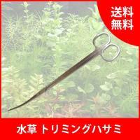 水草のお手入れに必要なトリミング用のはさみです。   【仕様】 ◆種類:湾曲形(カーブ) ◆サイズ:...