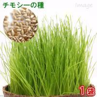 チモシーの種(1袋) 牧草 栽培 家庭菜園 種子 関東当日便