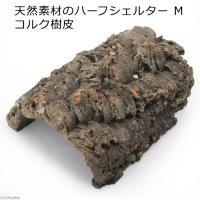 天然素材のハーフシェルター M コルク樹皮 トカゲ ヤモリ 関東当日便