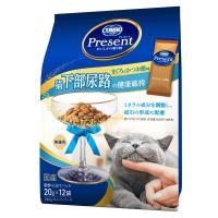コンボ プレゼント 猫下部尿路の健康維持 まぐろとかつお味 240g(20g×12袋) 国産 キャットフード ドライ