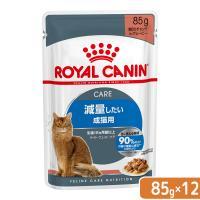 ロイヤルカナン 猫 ウルトラライト 成猫用 85g 12袋 9003579308769 関東当日便