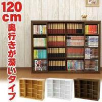 マンガや単行本、DVDにぴったりなサイズで実用的な本棚です。 見たい本を見つけやすい時に便利なスライ...