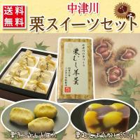 栗きんとん 和菓子 中津川 6個入 + 栗むし羊羹 1本(320g) 栗スイーツセット ギフト 送料無料