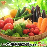 ◆地球畑実店舗でも販売している新鮮な有機野菜をセットに◆   地球畑店舗に並べられている野菜を作って...