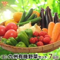 野菜セット 有機野菜おまかせセブン 九州野菜 鹿児島県 有機栽培 送料無料 7品目 ヘルシー テイスティ 冷蔵便