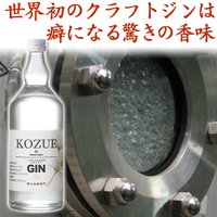 ジン クラフトジン 和製ジン