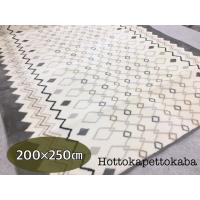 サイズ:約200x250c 素 材:(表)ポリエステル100%<     (中)ポリエステルフ...