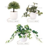 光触媒 観葉植物 おしゃれ バジル パキラ ラベンダー ミニアイビー など 7種類 人工観葉植物 光触媒Green (送料無料)